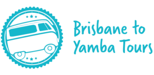 Brisbane to Yamba tours bus transfers and tours from Brisbane to Yamba.