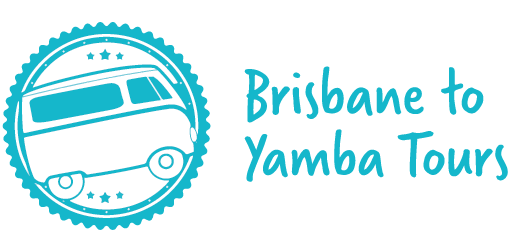 Brisbane to Yamba tours bus transfers and tours from
